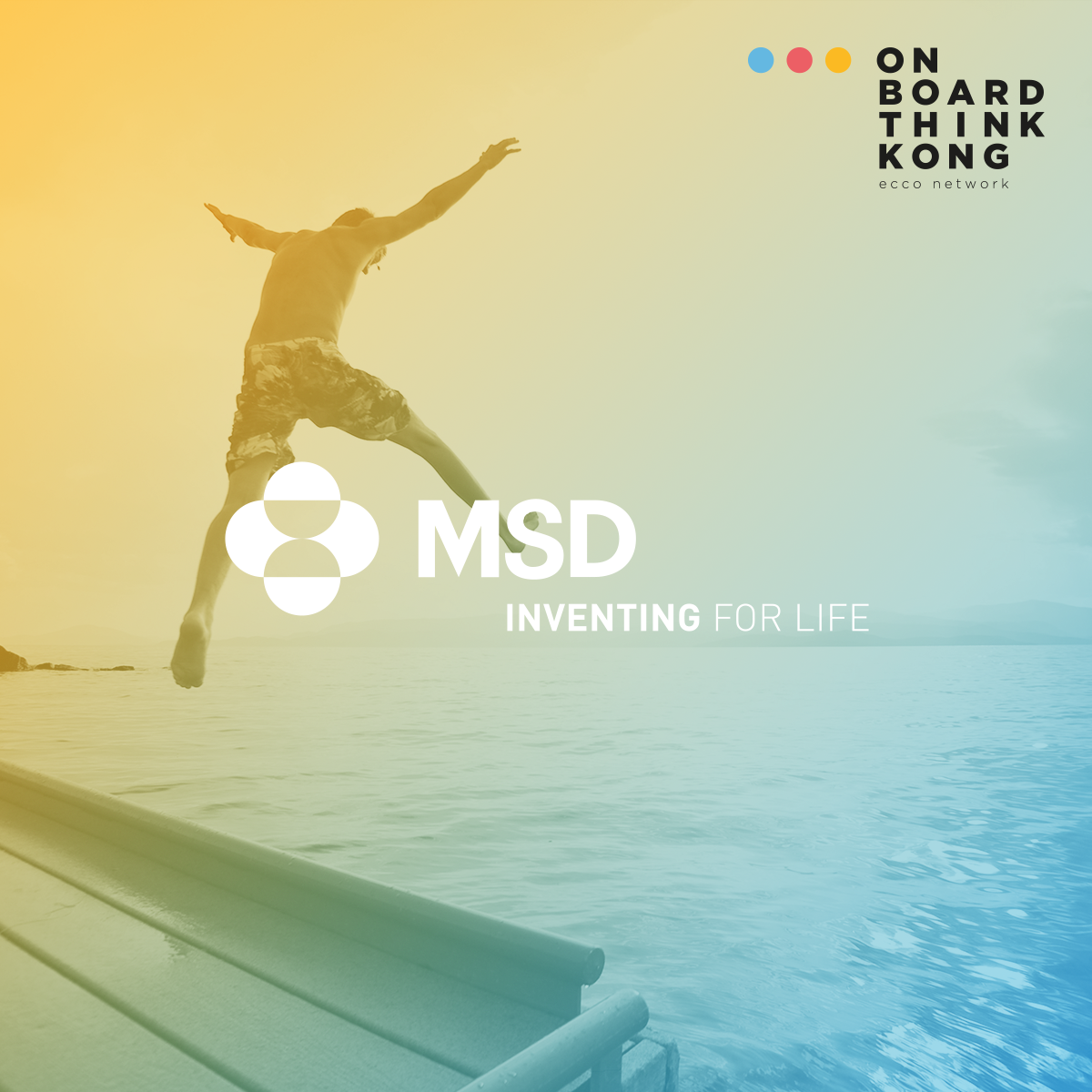 MSD Investing for Live